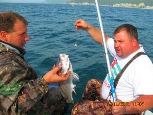 Фото в Лоо морская рыбалка, отзывы цены комментарии