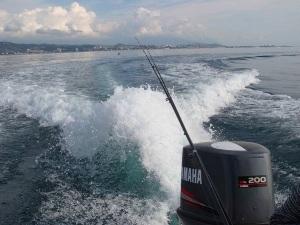 Лоо частная морская рыбалка фото