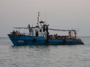 Отдых в Лоо на морской рыбалке является самым популярным местом отдыха. Начинается морская рыбалка в Лоо с бронирование катера и подготовки снастей для рыбалки в море. Начинается рыбалка с раннего утра и продолжается до полудня.