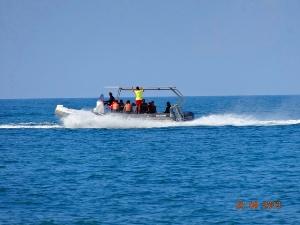 Морская рыбалка в Лоо организуется заранее, отдыхающим предлагают снять катер на прокат, и отправится с опытным инструктором на морскую рыбалку.  Арендовать катер можно в Лоо на любое время, в морском катере помещается шесть, десять рыбаков с полным снаряжением. Отдых на морской рыбалке в Лоо отличное мероприятие провести весело время. Существуют несколько видов рыбалки, рыбалка с берега моря позволяет ловить рыбу в море, не арендуя лодку, или катер.  Рыбалка в открытом море в Лоо становится популярным занятием отдыха, ежегодно в частный сектор Лоо приезжают рыбачить в открытом море. На морской рыбалке можно поймать много рыбы разного вида, ловится морской окунь, барабулька, катран, ставрида. Специально на катере для рыбаков оборудованы рыбацкие кресло, снасти рыбацкие удочки принадлежности Вам все предоставят на катере.  Некоторые отдыхающие предпочитают рыбачить на море в Лоо с берега, разместившись у берега моря можно спокойно рыбачить на удочку, или ловить рыбу небольшими сетями.