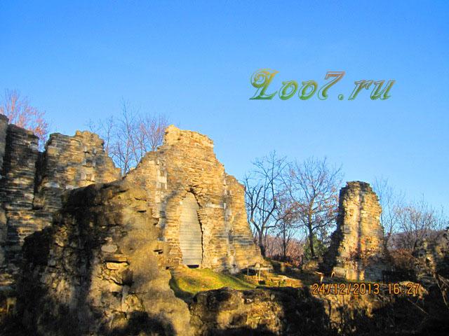 Фотографии храм в Лоо