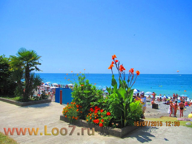 Центральный пляж в Лоо фото