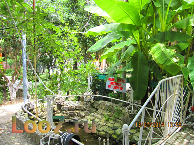 Летние домики в Лоо с садом