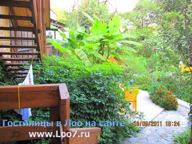 Снять недорого отдельно стоящий деревянный домик в Лоо