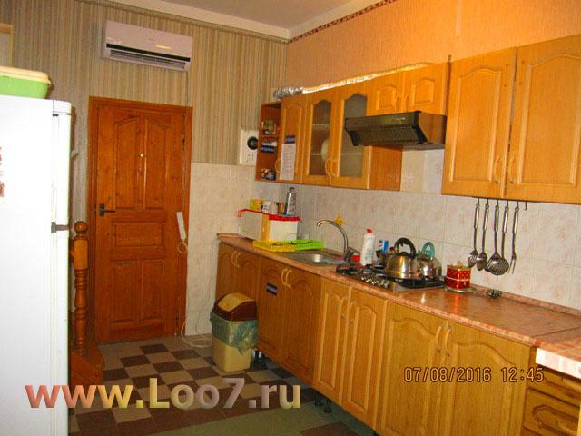 Эллинги в Лоо с кухней в номере фото